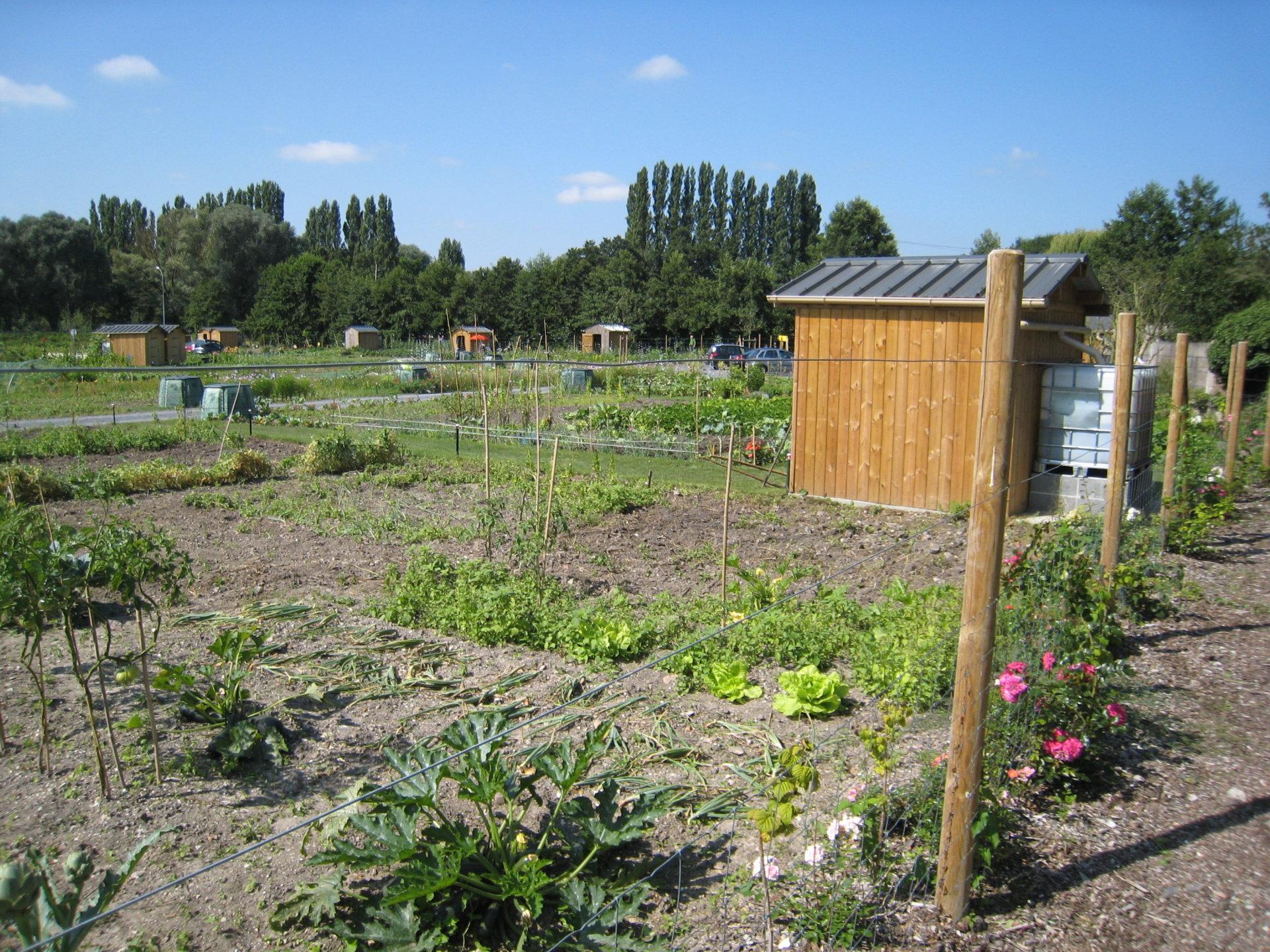 Jardins familiaux jardins familliaux de l 39 oise for Jardin familiaux