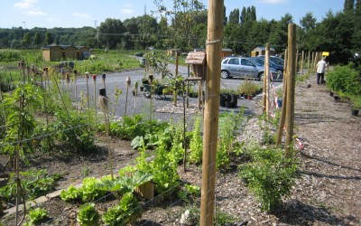 Jardins de Saint Quentin IMG_7050