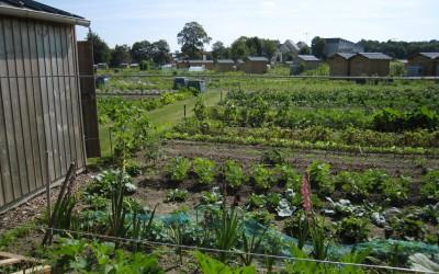 Jardins de Saint Quentin IMG_7063